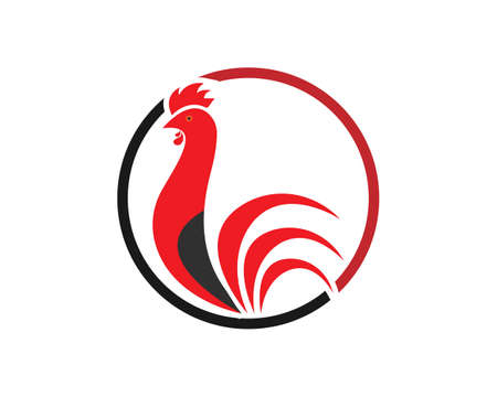 Rooster Template vector illustration