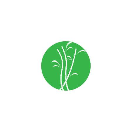 Sugar cane plant vector illustration design