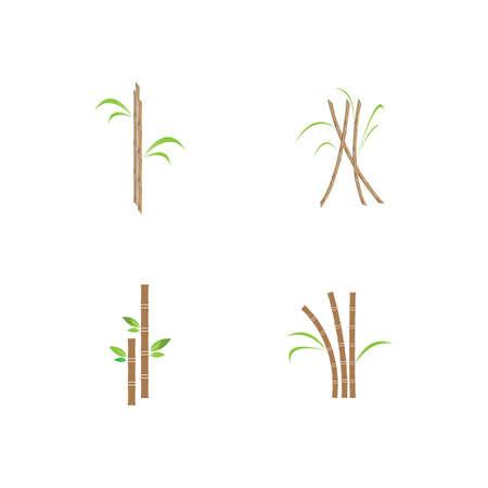 Sugar cane plant vector illustration design Vecteurs