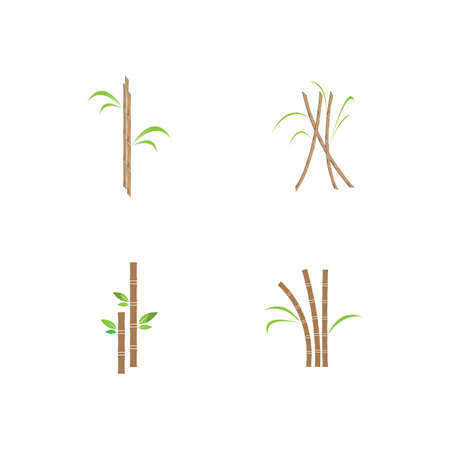 Sugar cane plant  vector illustration design Illustration