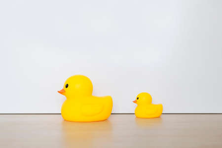 Duck, toy isolated with white background. Leadership concept.