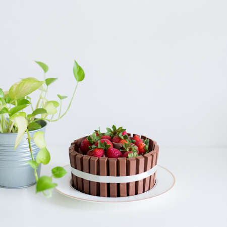 A chocolate cake with kitkat and strawberry on white desk. A very delicious cake. Фото со стока