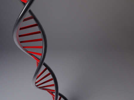 3D model of black and red DNA structure photo