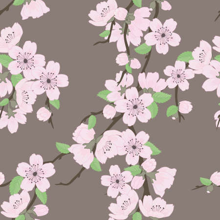 cherry pattern: Beautiful vector seamless pattern with sakura flowers and leaves Illustration