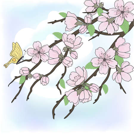 Beautiful vector sakura branch with flowers on sky Vector