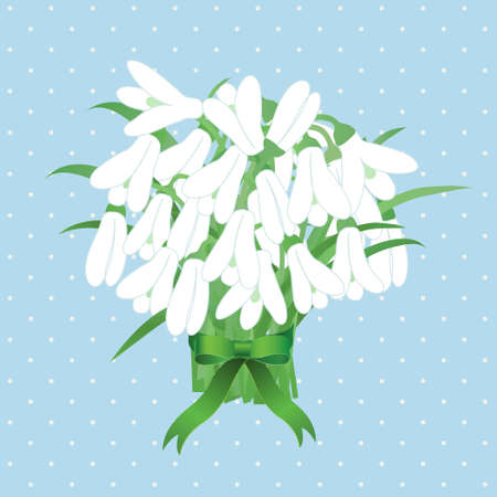 Vector spring snowdrop flowers with ribbon on blue background Vector
