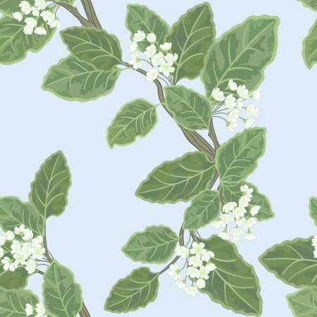 Seamless vector floral pattern with flowering branch