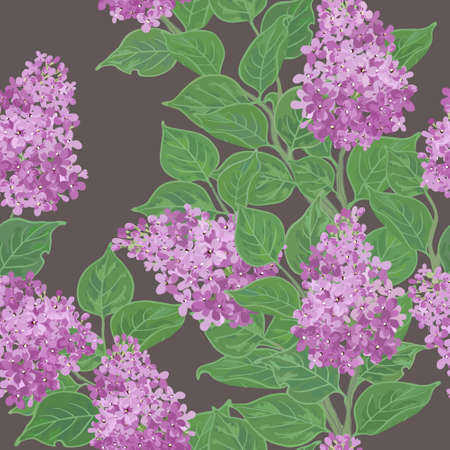 Seamless vector floral pattern with flowering lilac Vector