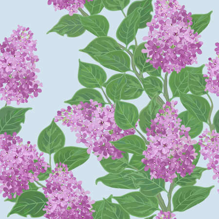 lilac flower: Seamless vector floral pattern with flowering lilac