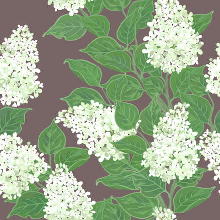 Seamless floral pattern with flowering white lilac Vector
