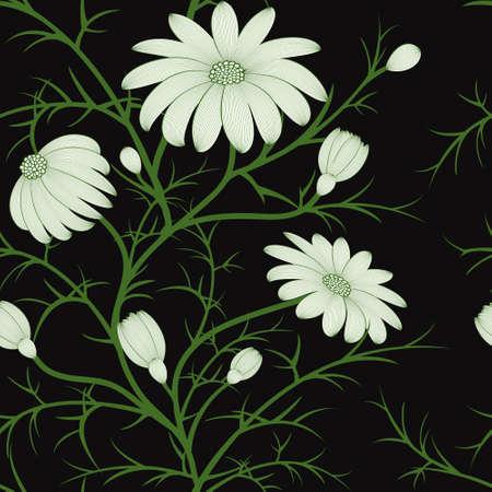 kamille: floral nahtlose Muster mit Hand - gezeichnete Kamillenbl�ten