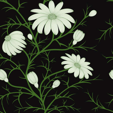 camomile: floral seamless pattern with hand - drawn camomile flowers