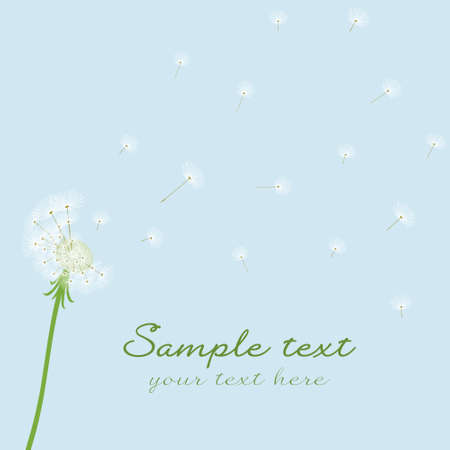dandelion wind: Cute vector blow dandelion on blue background Illustration