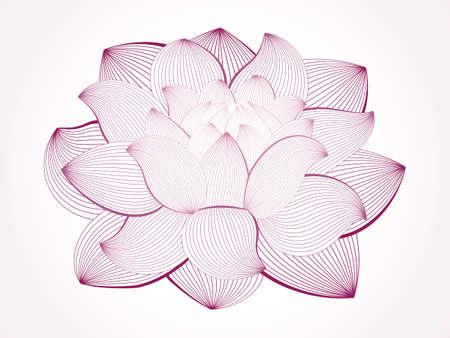 線の描画、白で隔離されるロータス ・ フラワー