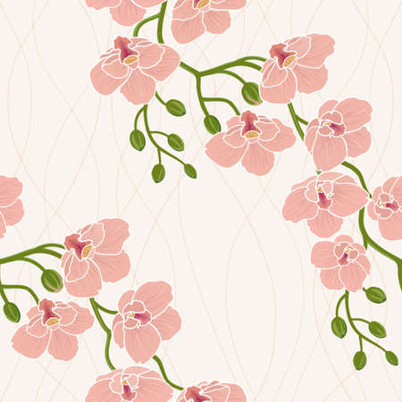 white orchids: Seamless floral wallpaper with branch of orchid flowers