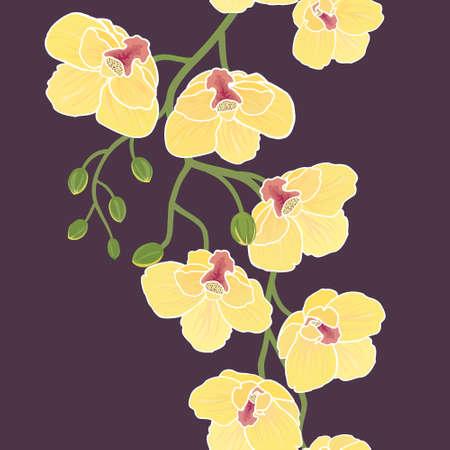 sem costura: Papel de parede floral sem emenda com ramo de flores de orqu?dea