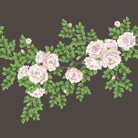 eglantine: Retro floral vector seamless pattern with tea-rose branch Illustration