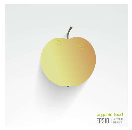 Realistic vector illustration of isolated apple. organic food. Vector