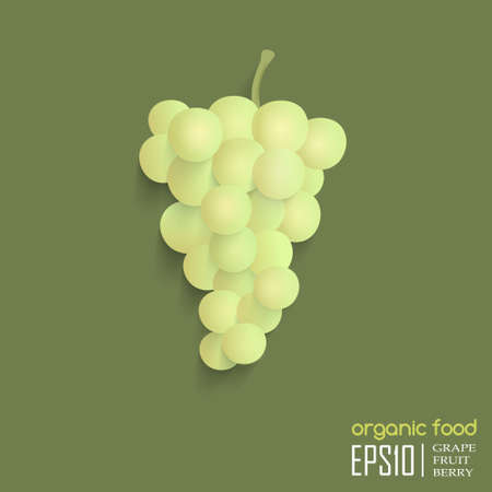 Realistic vector illustration of isolated grape. organic food. Vector