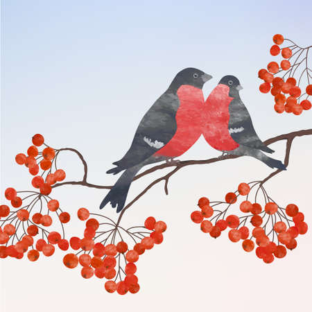 Winter card  with two bullfinches on a branch of rowan Vector