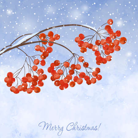 Winter background with  branches rowan berry, on watercolor  backdrop.  Christmas winter landscape greeting card
