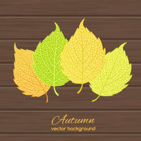 aspen: Beautiful  illustration  with autumn leaves on wooden background