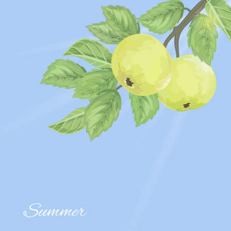 Elegant pattern with green apples and leaves against the sky Vector