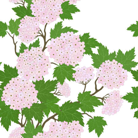 viburnum: Elegant seamless pattern with abstract leaves and  pink flowers