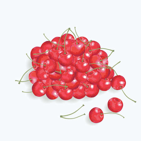 handful: Hahdful of  a red cherry on the  white background