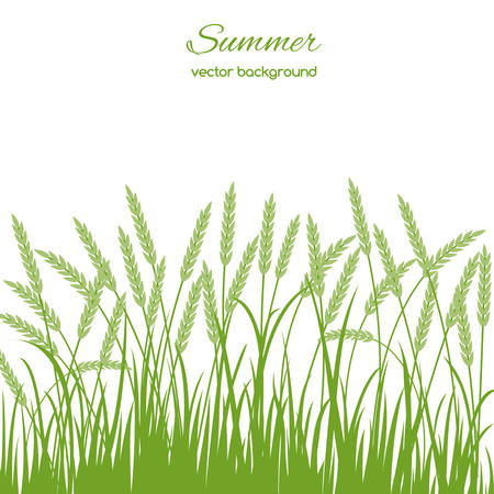 Spring card with grass and spikelets on white background Иллюстрация