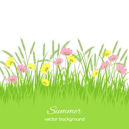 grass border: Spring card with grass, flowers and spikelets on white background