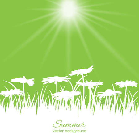 blowing: Spring card with flowers and grass on green background