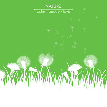 blows: Spring card with dandelions on green background