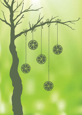 Hand drawn tree with hanging oranges. Blurred background Vector