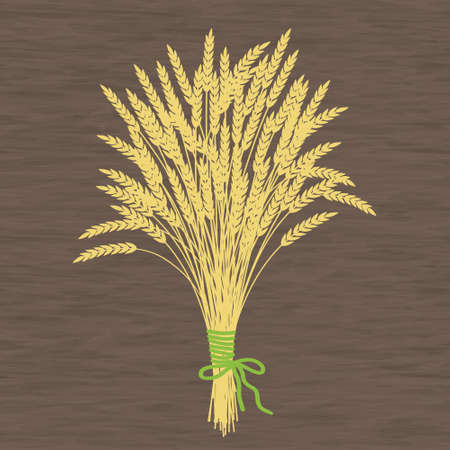 wheat harvest: Golden wheat ears on a wooden texture