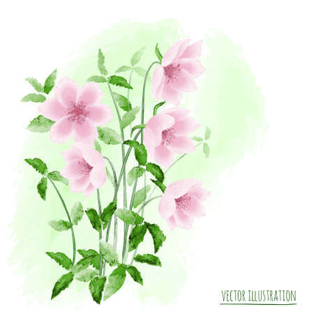 stylised: Beautiful watercolor  vector illustration with stylized flowers