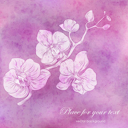 orchid branch: Vector card with pink watercolor texture and hand drawn stylized orchid branch . Perfect  cards for any  kind of design, birthday and other holiday Illustration