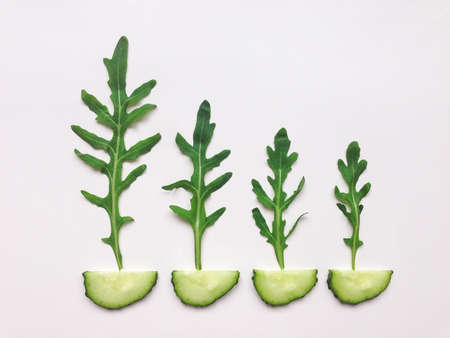 leaf vegetable: Green vegetable organic pattern with cucumbers and rocket salad. Flat lay on white table