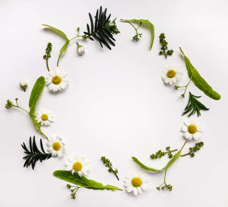 Colorful summer round frame with herbs and flowers. Flat lay on white table 写真素材