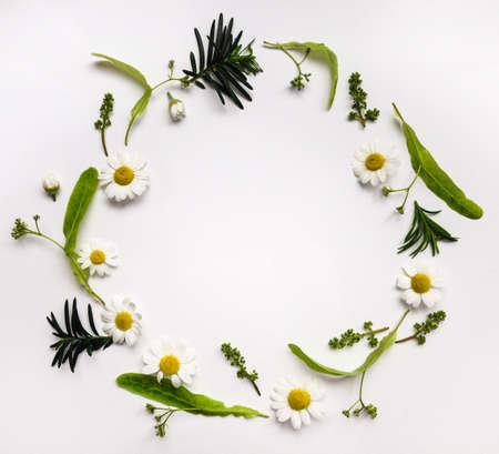 arbre vue dessus: Colorful cadre rond d'été avec des herbes et des fleurs. poser à plat sur la table blanche
