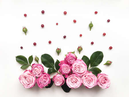 flat: Decorative frame with pink bright roses and berries on white background. Flat lay composition