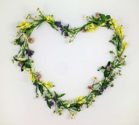 heart symbol: Heart symbol made of meadow flowers and leaves on white background. Flat lay, top view