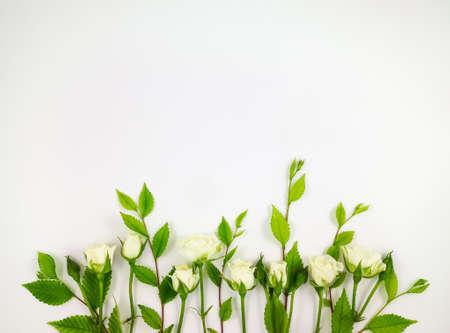 flores de cumpleaños: Marco decorativo con las rosas blancas suaves en el fondo blanco. aplanada, vista desde arriba, con copia espacio Foto de archivo