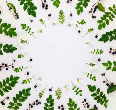 葉、果実、白い背景の上に花のカラフルな明るいパターン。コピー スペースとフラット横たわっていた、トップ ビュー