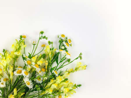Colorful bright bouquet made of wild flowers on white background. Flay lay, top view with copy space
