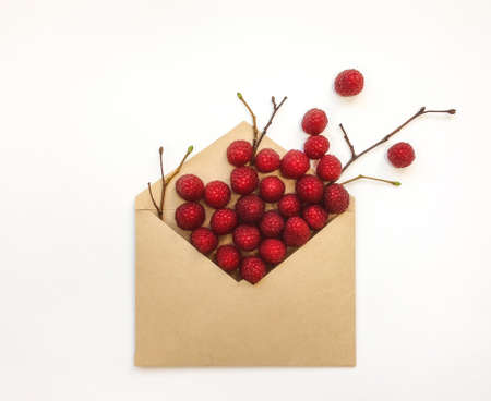 envelop: Ripe fresh raspberries and tree branches in a envelop on white background. Stylish flat lay. Minimal concept Stock Photo