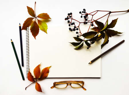 creeper: Autumn composition with sketchbook, pencils and glasses on white background, decorated with red leaves and berries of virginia creeper. Flat lay, top view, view from above Stock Photo