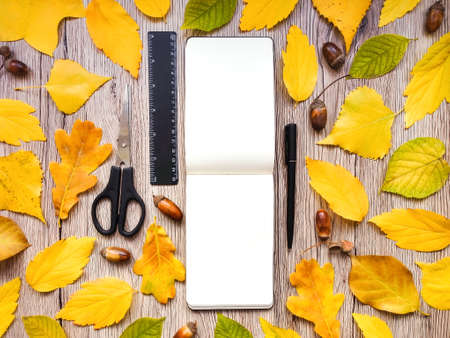 Closeup of sketchbook, scissors, ruler and pen. Decorated with autumn yellow leaves and acorns on wooden background. Top view, flat lay, view from above Banco de Imagens
