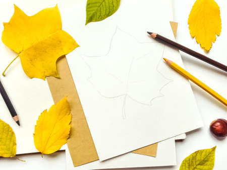 Autumn composition with sketchbook and pencils on white background, decorated with yellow and green leaves. Fall still-life. Artistic workplace with leaf illustration. Flat lay, top view