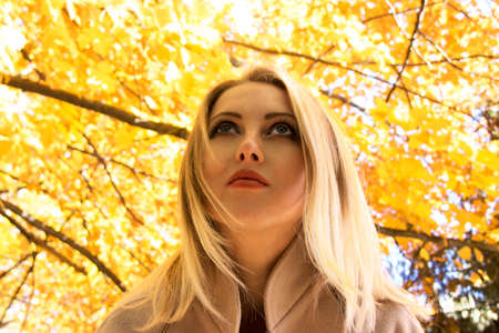 thanksgiving adult: Pretty girl in autumn forest Stock Photo